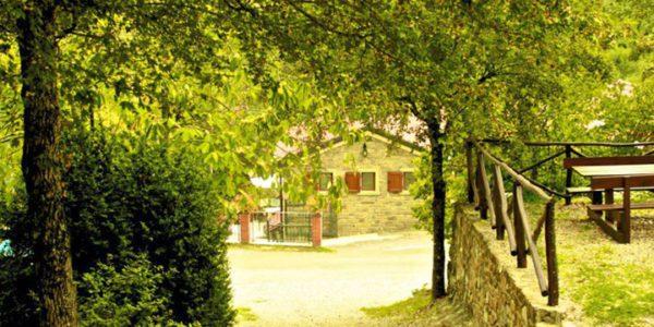 Campo Tizzoni B 2014