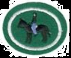 Equitazione I